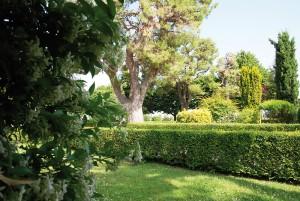Il giardino del Cassero: uno splendido angolo verde nella parte più alta del borgo. (foto Marcello Tramandoni.)