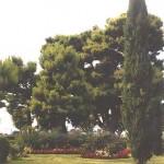 Giardini del Cassero